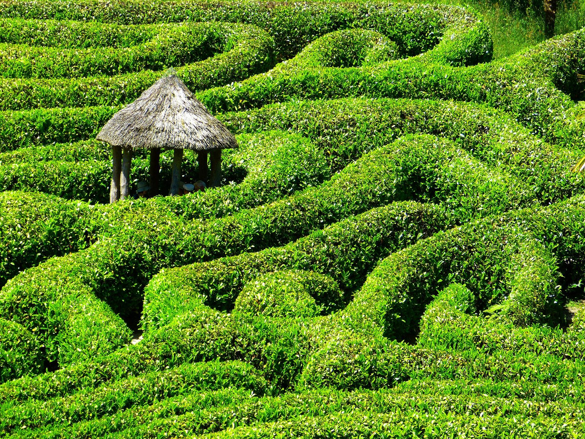 Labyrinth – wohin führt mein Weg?